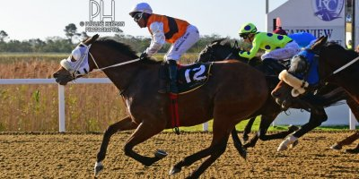 R6 Gavin Smith Muzi Yeni Sunday Falls- 5 July 2019-Fairview Racecourse-1-PHP_8636