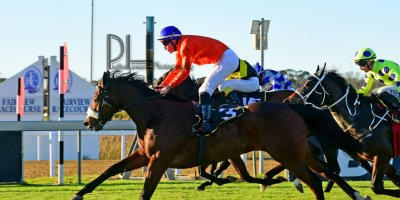 R8 Alan Greeff Bernard FaydH'erbe Rings and Things- 7 June 2019-Fairview Racecourse-1-PHP_5219