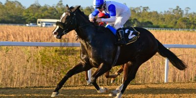 R8 Tara Laing Wayne Agrella La Roquette- 5 July 2019-Fairview Racecourse-1-PHP_8748