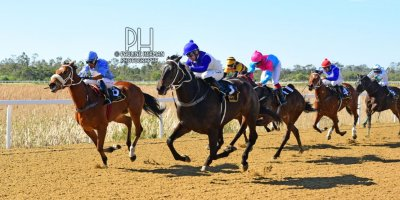R2 Duncan McKenzie Teaque Gould Sierra Lane- 5 August 2019-Fairview Racecourse-1-PHP_3809