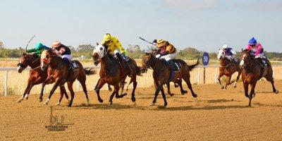 R4 Hekkie Strydom Charles Ndlovu Okavango Delta-Fairview Racecourse-16 August 20191-DSC_0298