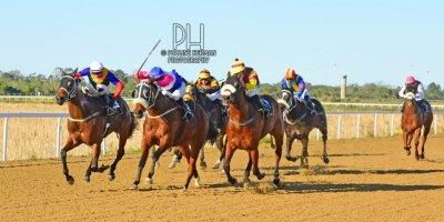 R7 Tara Laing Chase Maujean Exelero- 5 August 2019-Fairview Racecourse-1-PHP_4140