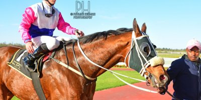 R7 Tara Laing Chase Maujean Exelero- 5 August 2019-Fairview Racecourse-1-PHP_4156