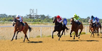 R1 Alan Greeff Greg Cheyne Giocomo-Fairview Racecourse-2 September 20191-PHP_7224