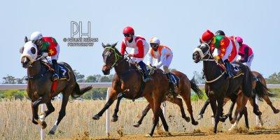 R1 Gavin Smith Julius Mphanya Benevolence-Fairview Racecourse-27 September 20191-PHP_0888