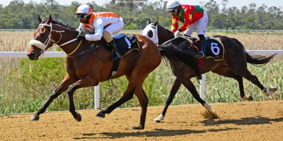 R1 Gavin Smith Julius Mphanya Benevolence-Fairview Racecourse-27 September 20191-PHP_0897