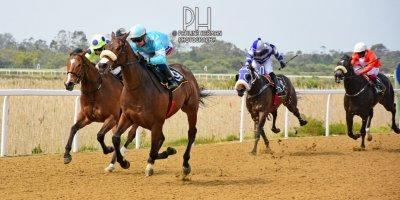 R3 Alan Greeff Greg Cheyne Rock Aloe-Fairview Racecourse-20 September 20191-PHP_9313