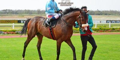 R3 Alan Greeff Greg Cheyne Rock Aloe-Fairview Racecourse-20 September 20191-PHP_9323