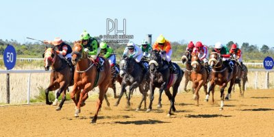 R3 Five Star Shadlee Fortune Victory March-Fairview Racecourse-2 September 20191-PHP_7314