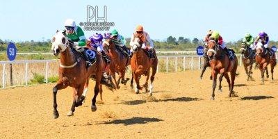 R3 Gavin Smith Warren Kennedy Master Newton-Fairview Racecourse-6 September 20191-PHP_7866