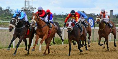 R4 Gavin Smith Muzi Yeni Western Angel-Fairview Racecourse-30 September 20191-PHP_1736