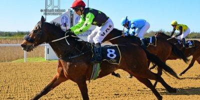 R5 Five Star Racing MJ Byleveld Captain's Vista-Fairview Racecourse-6 September 20191-PHP_8050