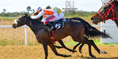 R6 Alan Greeff Greg Cheyne Brandina-Fairview Racecourse-13 September 20191-PHP_8689