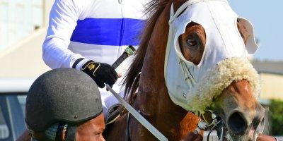 R6 Gavin Smith Greg Cheyne Dawnbreaker-Fairview Racecourse-27 September 20191-PHP_1207