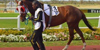 -Fairview Racecourse-Algoa Cup Social Images- Sponsored Saddle Cloths -27 October 2019-1-DSC_0262