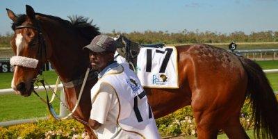 -Fairview Racecourse-Algoa Cup Social Images- Sponsored Saddle Cloths -27 October 2019-1-DSC_0263