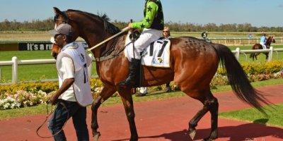 -Fairview Racecourse-Algoa Cup Social Images- Sponsored Saddle Cloths -27 October 2019-1-DSC_0266
