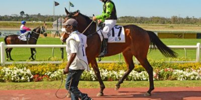-Fairview Racecourse-Algoa Cup Social Images- Sponsored Saddle Cloths -27 October 2019-1-DSC_0267