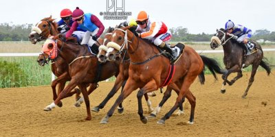 R2 Alan Greeff Greg Cheyne Delias Delight-Fairview Racecourse-18 October 20191-PHP_3743