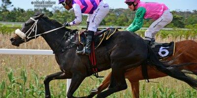 R4 Gavin Smith Muzi Yeni Nevertheless-Fairview Racecourse-11 October 20191-PHP_3197
