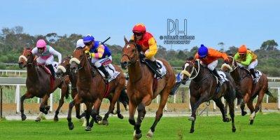 R7 Glen Kotzen Morne Winnaar Viva Rio Racing Association Stakes-Fairview Racecourse-25 October 20191-PHP_4809