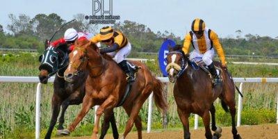 Fairview Racecourse - R6 Yvette Bremner Wayne Agrella Mtakatyi01 November 2019-1-PHP_6361