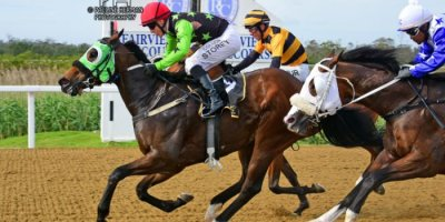 Fairview Racecourse - R7 Five Star Racing Collen Storey The Greek Soldier01 November 2019-1-PHP_6457
