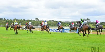 R1 Alan Greeff Shoes Nonzonzo Tungsten - Workriders - -Fairview Racecourse -8 November 2019-1-PHP_6773