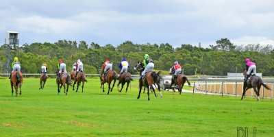 R1 Alan Greeff Shoes Nonzonzo Tungsten - Workriders - -Fairview Racecourse -8 November 2019-1-PHP_6774