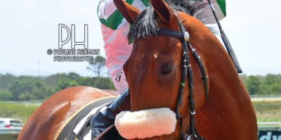 R1 Alan Greeff Teaque Gould Miss Orange-Fairview Racecourse -18 November 2019-1-PHP_8159
