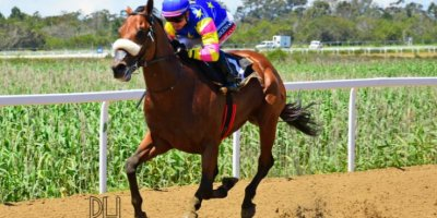 R2 Alan Greeff Greg Cheyne Foreign Source-Fairview Racecourse -15 November 2019-1-PHP_7669