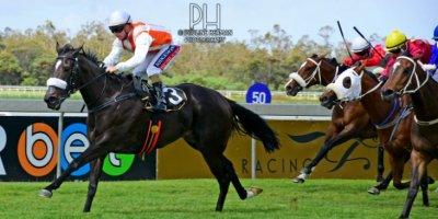 R5 Alan Greeff Greg Cheyne Mendocino-Fairview Racecourse -27 December 2019-1-PHP_5636