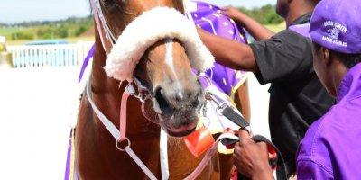 R5 Gavin Smith Marco van Rensburg Cloud Atlas-Fairview Racecourse -17 December 2019-1-PHP_3954