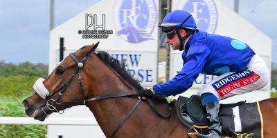 R8 Alan Greeff Greg Cheyne Verbarium-Fairview Racecourse -30 December 2019-1-PHP_7472