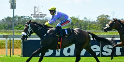 R1 Alan Greeff Greg Cheyne Delicasea-Fairview Racecourse-21 FEB 2020-1-PHP_4819