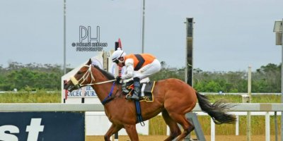 R1 Gavin Smith Marco van Rensburg Daichi-Fairview Racecourse-28 FEB 2020-1-PHP_5594