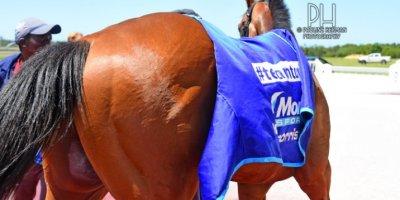 R1 Tara Laing Chase Maujean Apollo Rock-Fairview Racecourse-11 FEB 2020-1-PHP_3475