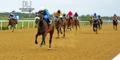 R2 Alan Greeff Greg Cheyne Scented Garden-Fairview Racecourse-7 FEB 2020-1-PHP_2315