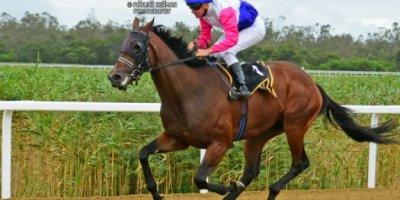 R3 Candice Bass Robinson Bernard FaydH'erbe Travetire-Fairview Racecourse-7 FEB 2020-1-PHP_2354