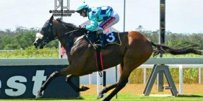 R4 Alan Greeff Greg Cheyne Africa's Gold-Fairview Racecourse-14 FEB 2020-1-PHP_4017