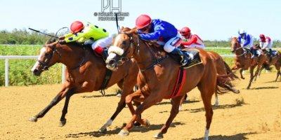 R4 Alan Greeff Greg Cheyne Meryl-Fairview Racecourse-11 FEB 2020-1-PHP_3608