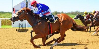 R4 Alan Greeff Greg Cheyne Meryl-Fairview Racecourse-11 FEB 2020-1-PHP_3610
