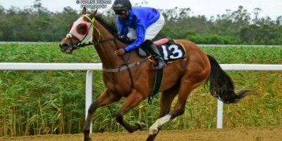 R4 Jacques Strydom Donald Bogaleboile Hopeful-Fairview Racecourse-7 FEB 2020-1-PHP_2515