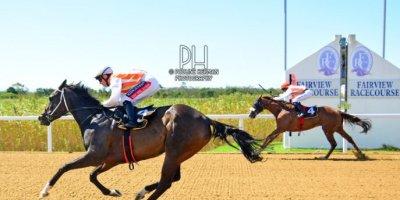 R5 Alan Greeff Greg Cheyne Ambra-Fairview Racecourse-24 FEB 2020-1-PHP_5322