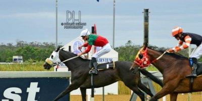 R5 Gavin Smith Bernard Fayd'Herbe Exclusitivy-Fairview Racecourse-28 FEB 2020-1-PHP_5839