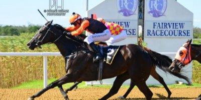 R6 Yvette Bremner MJ Byleveld Elusive Fountain-Fairview Racecourse-11 FEB 2020-1-PHP_3719