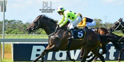 R6 Yvette Bremner Wayne Agrella Duology-Fairview Racecourse-14 FEB 2020-1-PHP_4130