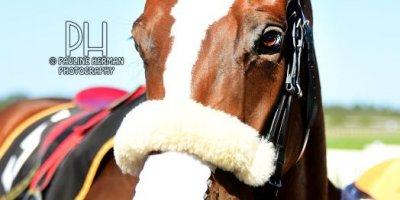 R7 Alan Greeff Charles Ndlovu ALDO-Fairview Racecourse-11 FEB 2020-1-PHP_3815