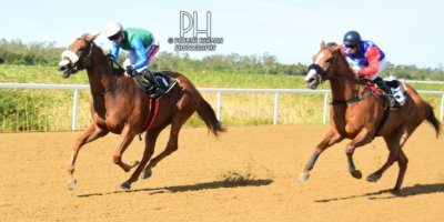 R7 Alan Greeff Greg Cheyne Fee Fi Foe Fum-Fairview Racecourse-24 FEB 2020-1-PHP_5502