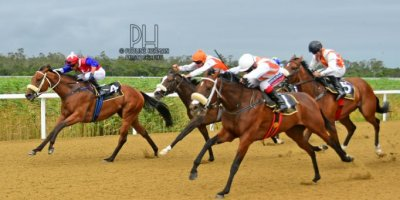 R7 Alan Greeff Greg Cheyne Luna Wish-Fairview Racecourse-7 FEB 2020-1-PHP_2681